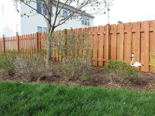 Fence Painting in Northwest Chicago Suburbs Illinois